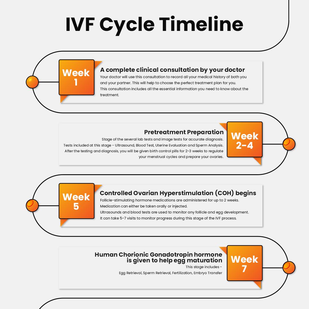 IVF Cycle Timeline