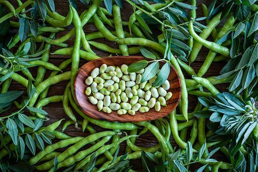 https://media.istockphoto.com/photos/broad-beans-lima-beans-fresh-just-after-harvest-picture-id1226541068?b=1&k=6&m=1226541068&s=170667a&w=0&h=GgRRbP6N021-QnrKmICxnhiz4g0ug7rgzp68rIe0uVA=