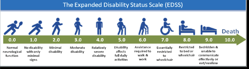 The Expanded Disability Status Scale