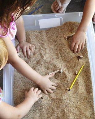 Конспект занятия с детьми от 3 до 6 лет на тему: Раскопки динозавров для детей