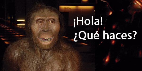 Imagen australopithecus - Wikipedia. Editado: @luisedohz