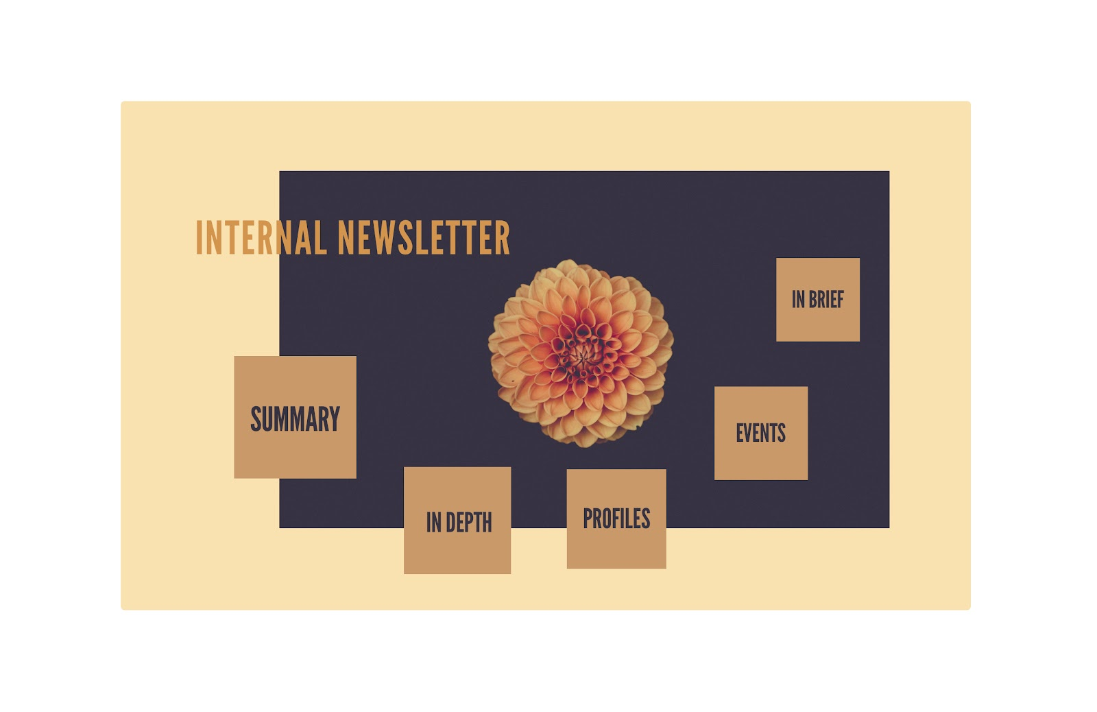 Combine design elements to create a stunning newsletter Prezi presentation.