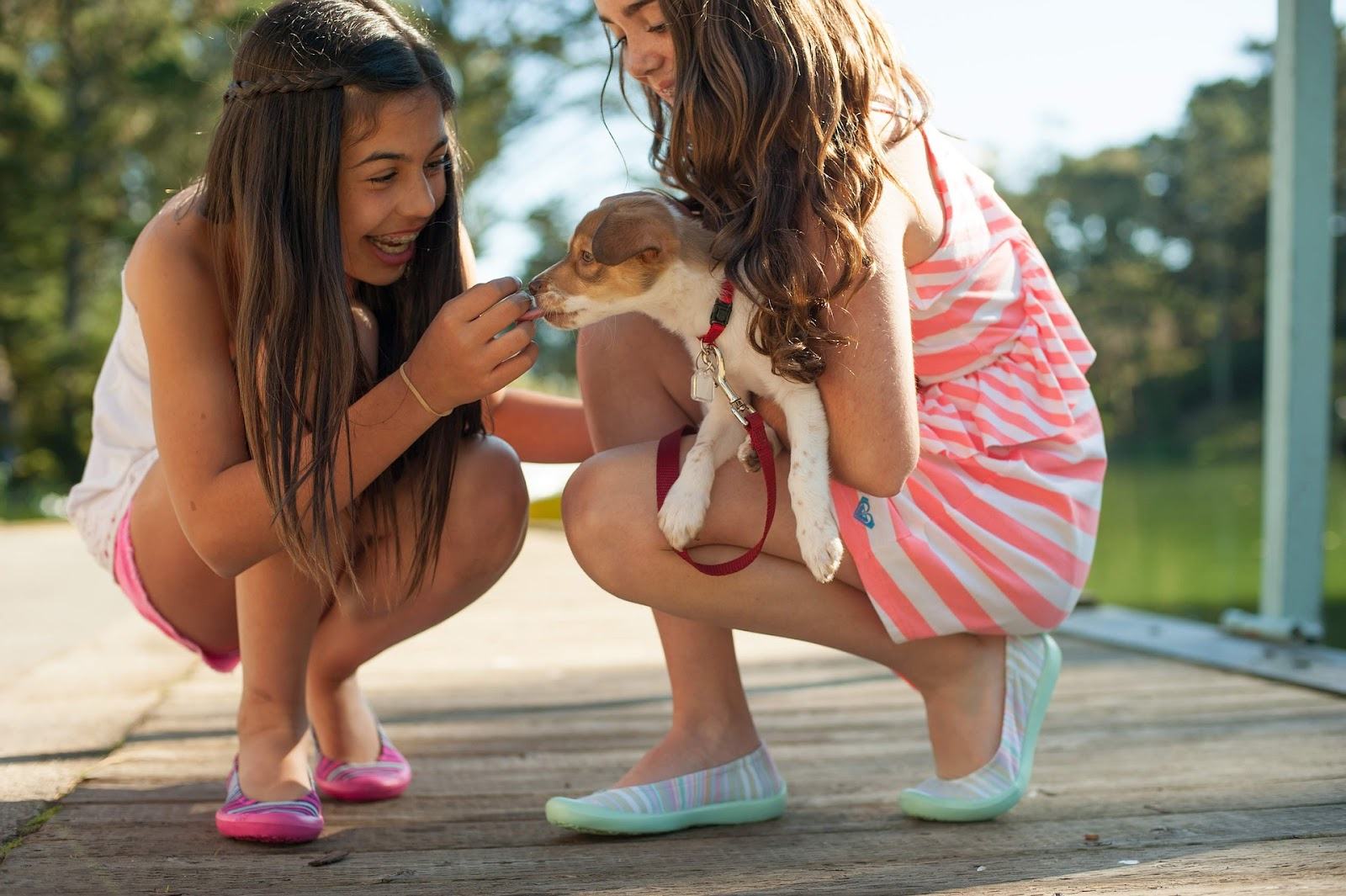 two girls playing with a puppy