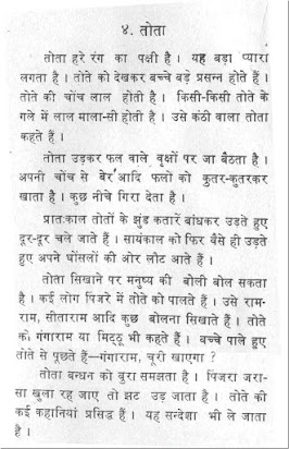 Long Essay On Pigeon In Hindi