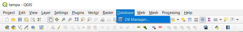 Top navigation bar with Database selected and the DB Manager option highlighted