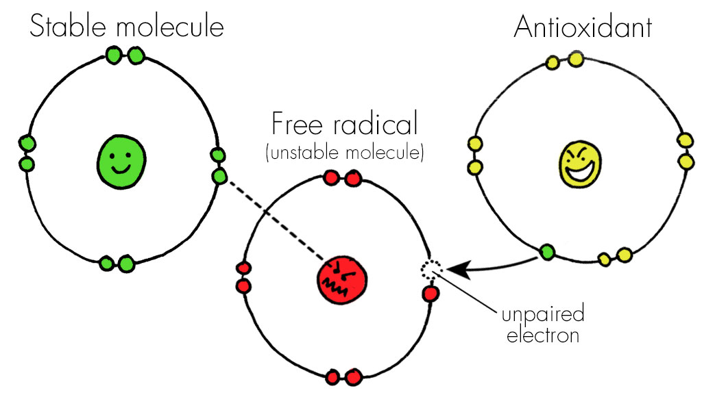 Anti-oxidant CBD