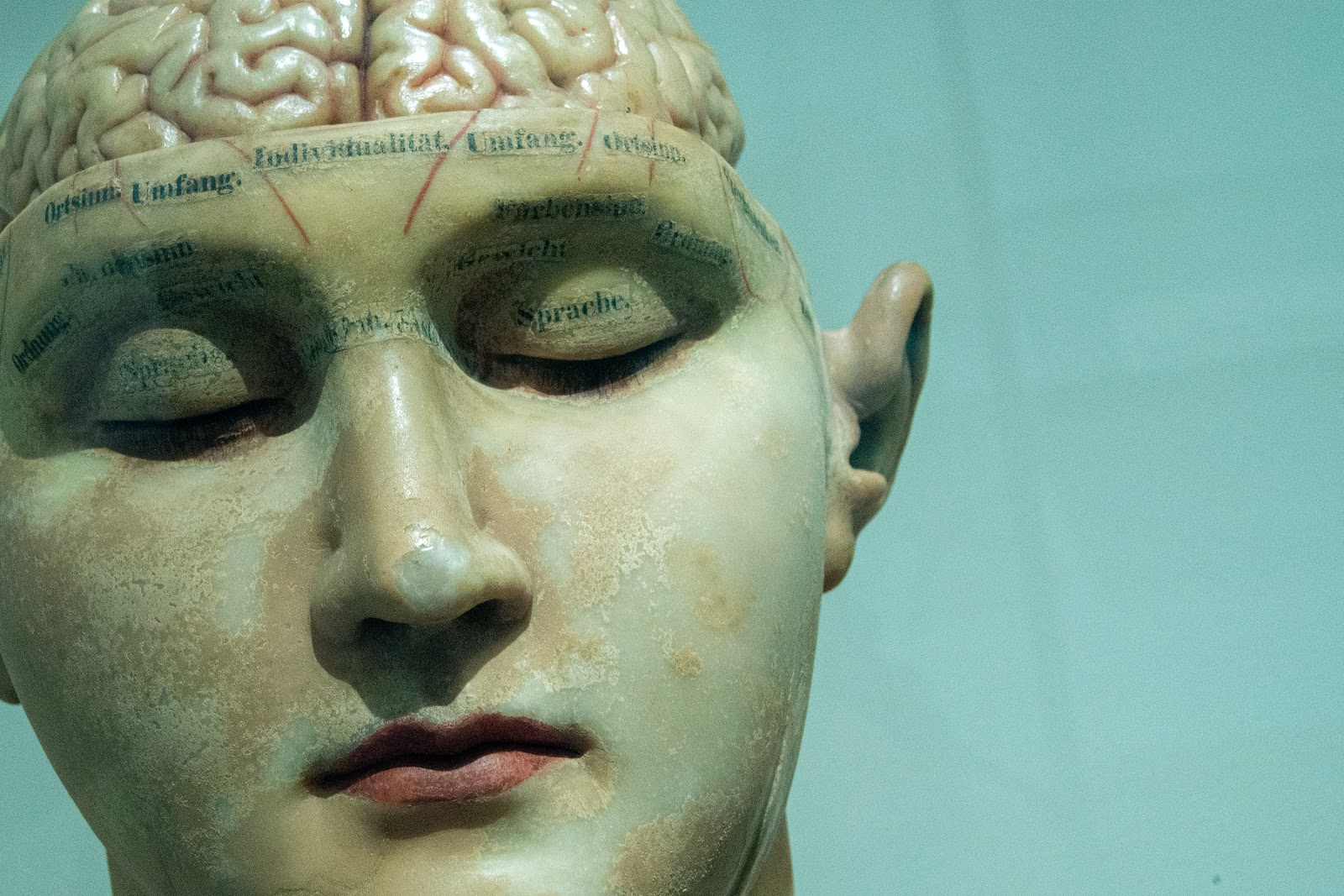Reconstructive memory (& the 3 stages of memory)