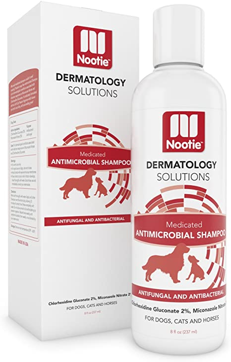 Dog Eczema - OurEczemaStory.com