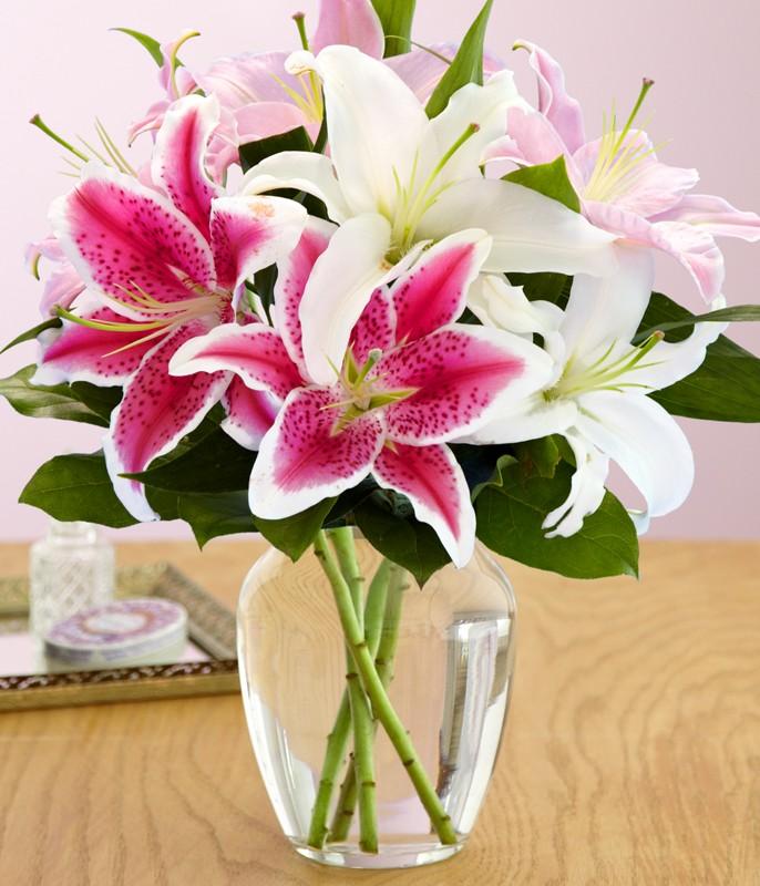 Với hoa ly rực rỡ, thơm ngát không nên dâng lễ Phật