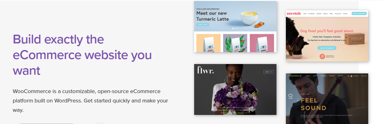 WooCommerce's landing page