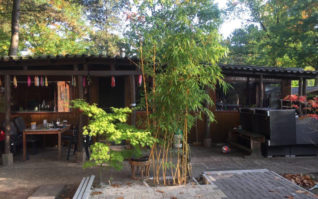 Домик на территории кемпинга, в котором жила семья Тайхутту.