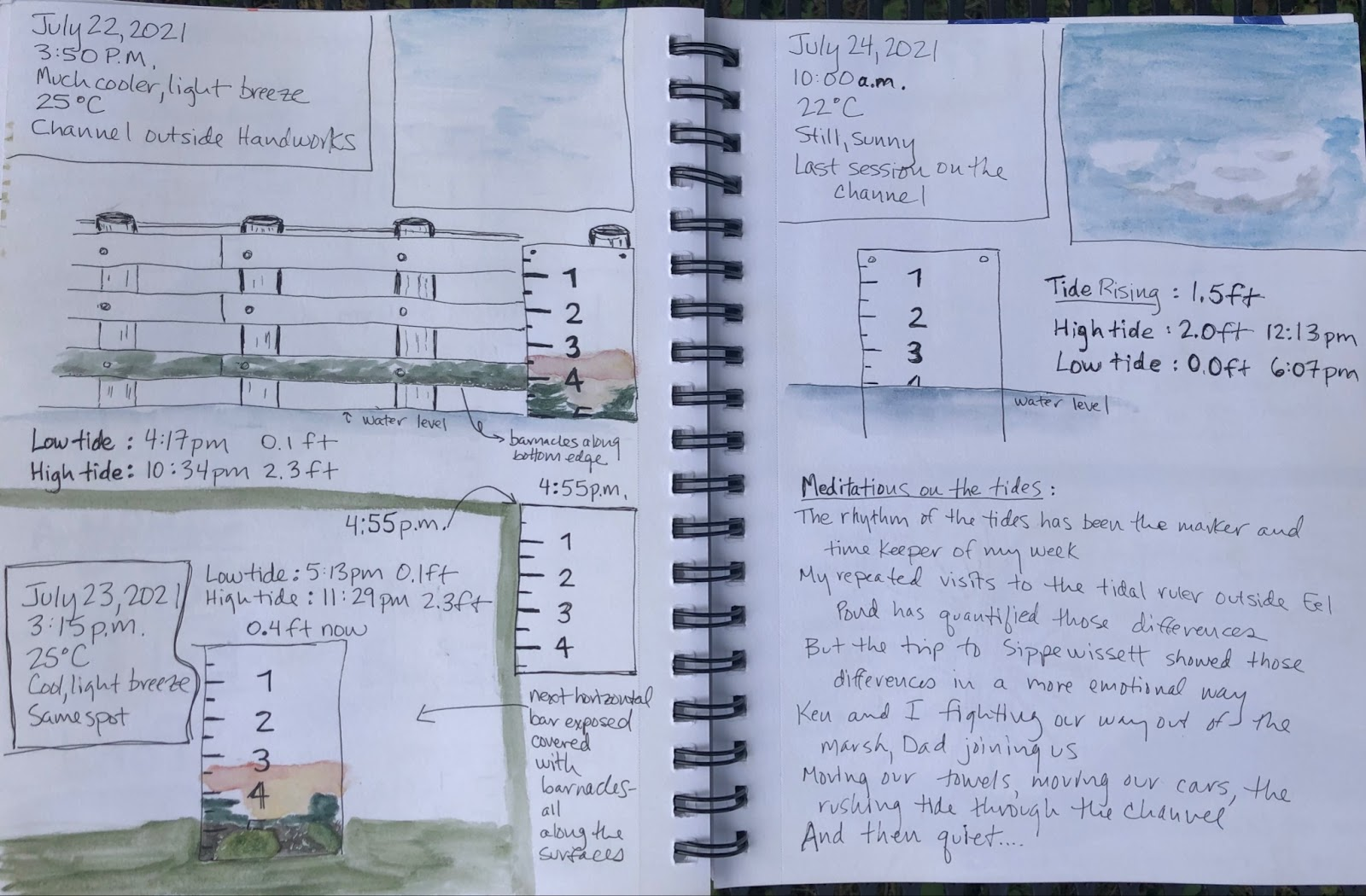 Two pages from the nature journal of Dr. Schafer detailing tide heights in July at various times.