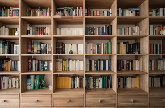 Basement Storage Idea - Bookself