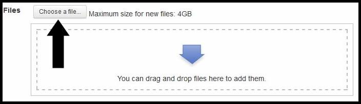 Choose a file.jpg