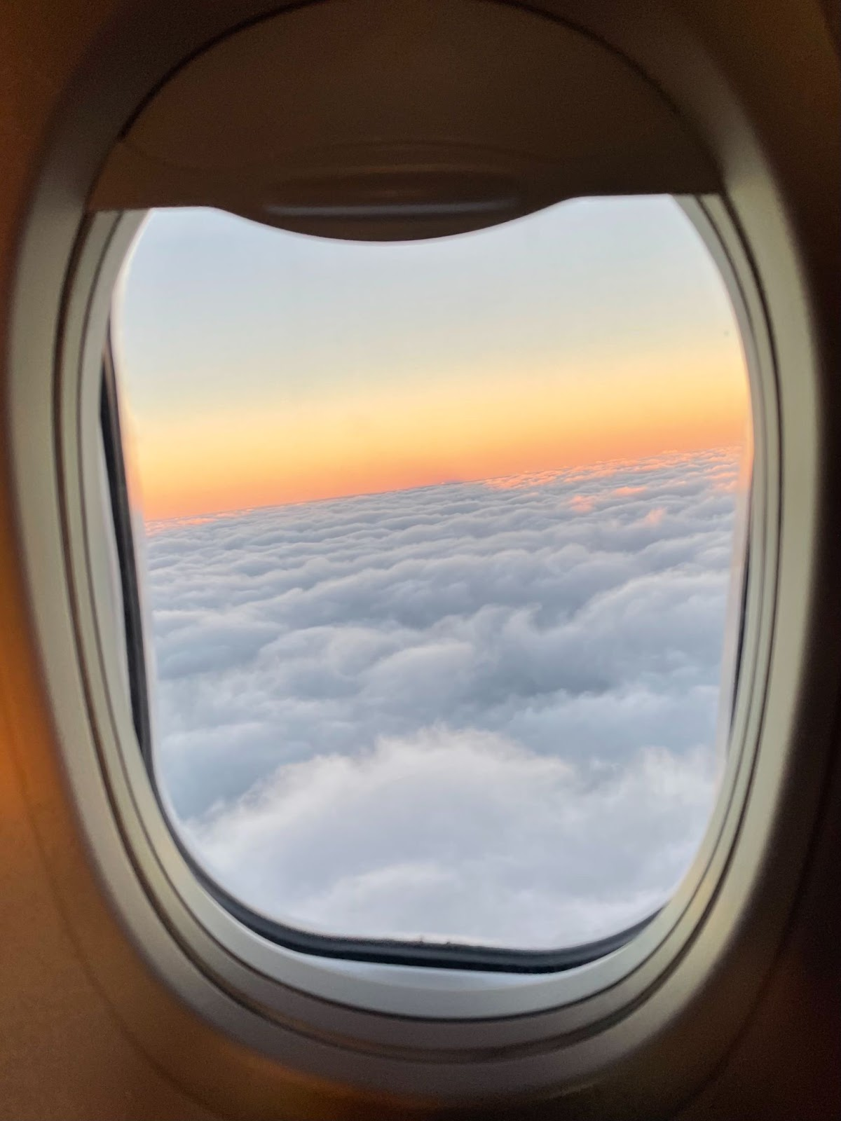 view out an airplane window at sunset