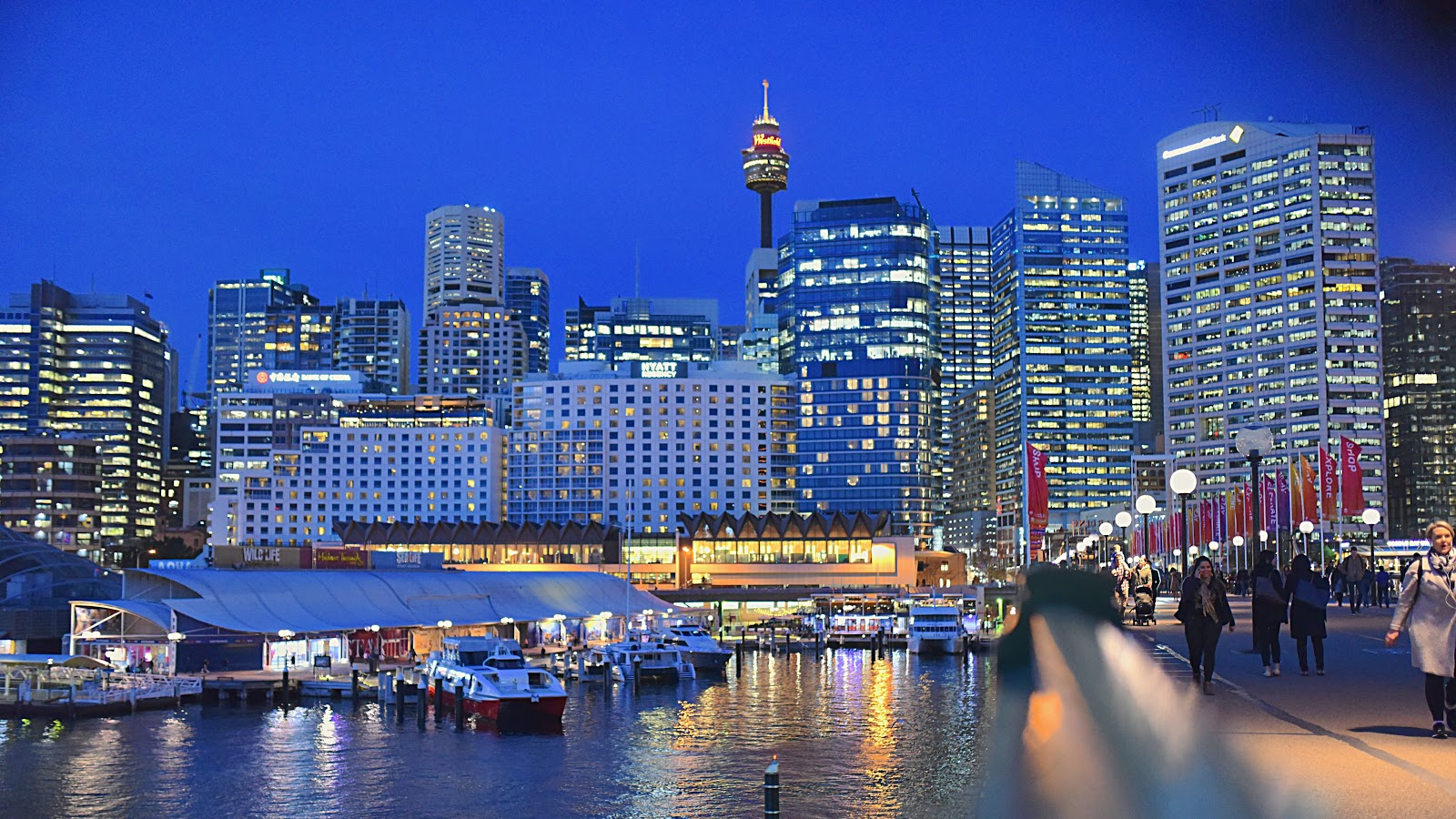 View of Darling Harbor at night. Packed with child-friendly activities that even adults find entertaining