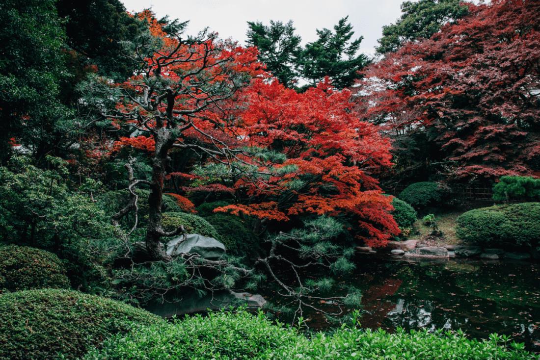 Shirokane area guide tokyo weekender