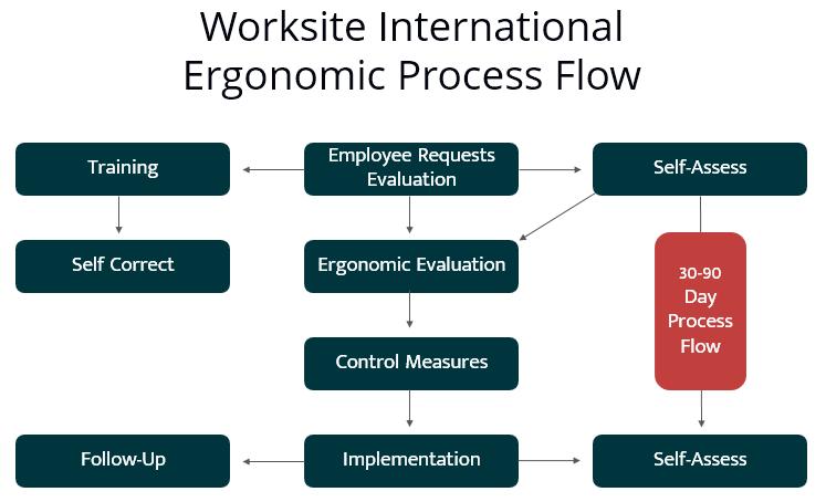 Ergonomics Process