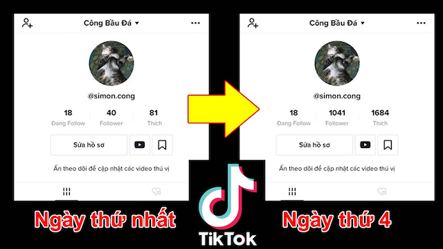 Các bạn hãy tham khảo giá dịch vụ tang follow tiktok viet trên thị trường