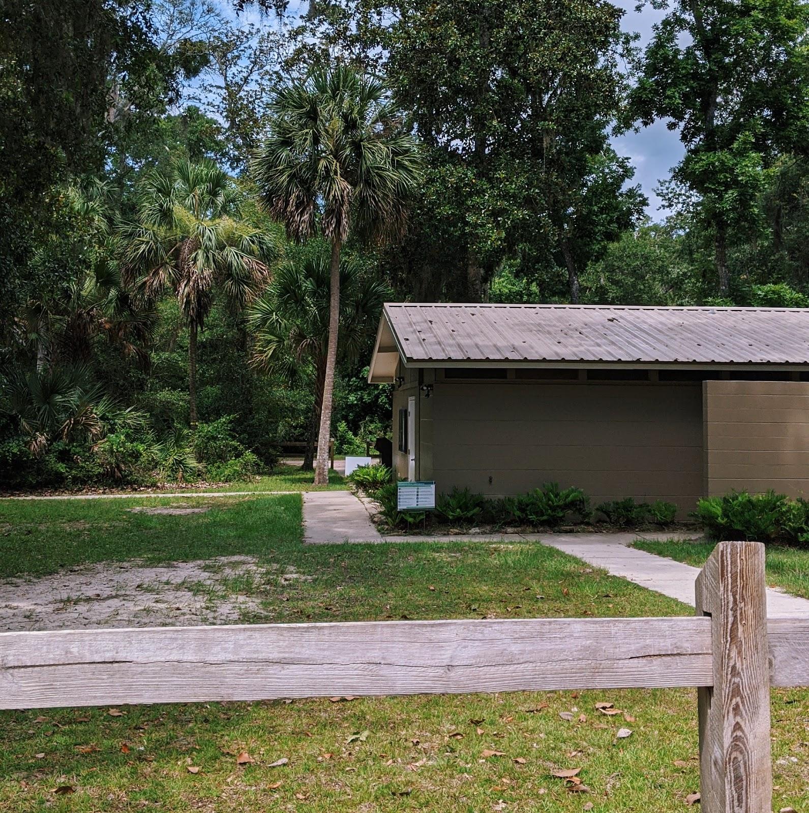 """קאמפינג בפלורידה, טיול בצפון פלורידה לישון בטבע לינה בדרום ארה""""ב יער טרופי"""
