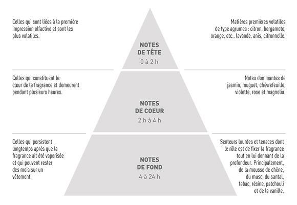 La pyramide olfactive – Ma Parfumerie