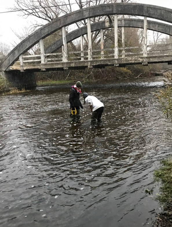 Photo of the Guelph Team of undergraduate students studying the effect of road salts on water quality.