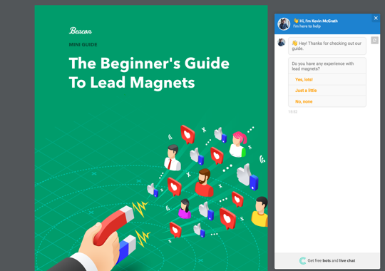 Readers can interact with your chatbot inside the lead magnet