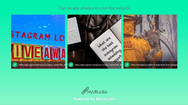 blog-traffic-from-Instagram-posts-links