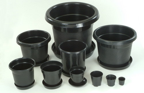 Vasos de plástico comuns para cultivo indoor de plantas