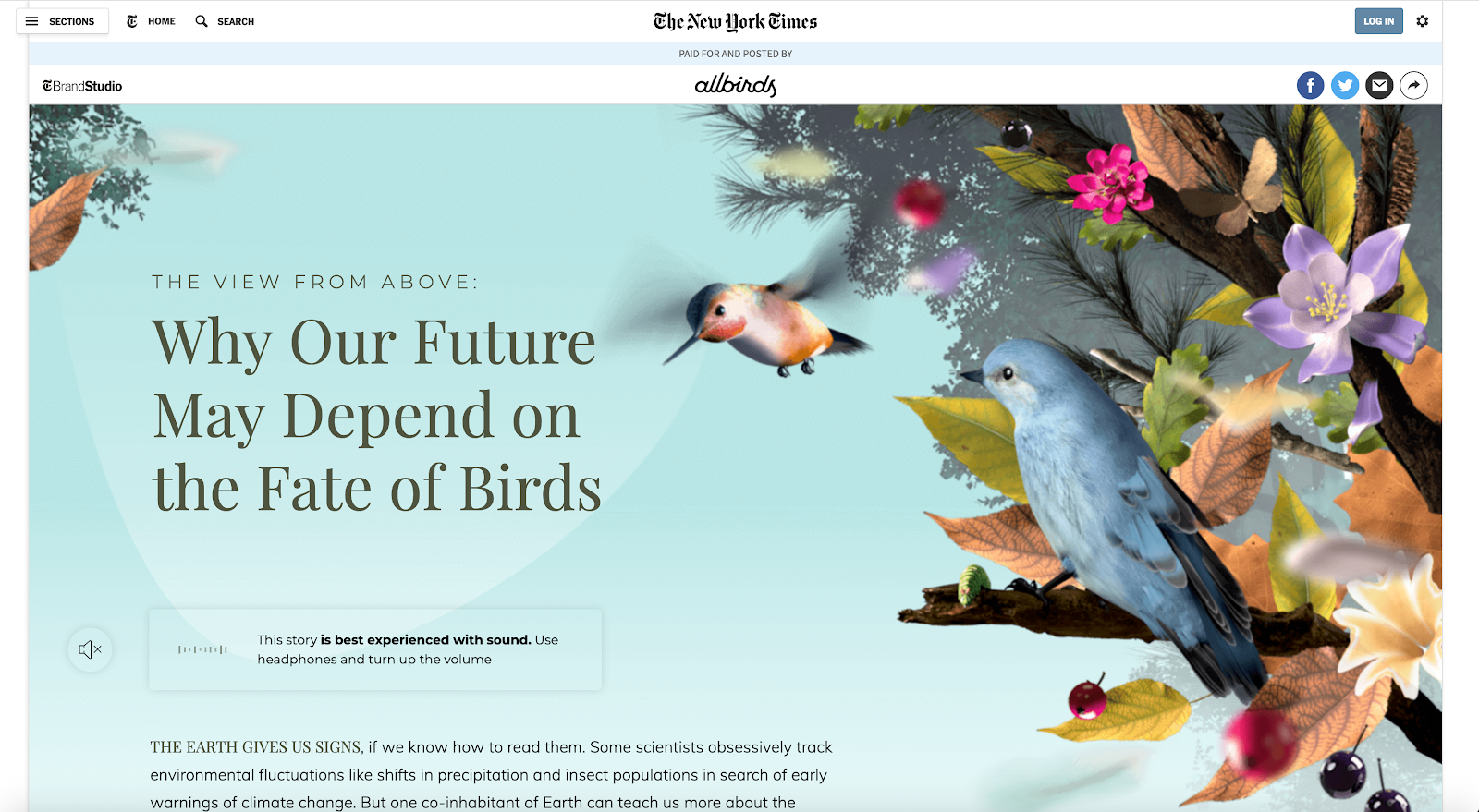 New york times website color schemes examples