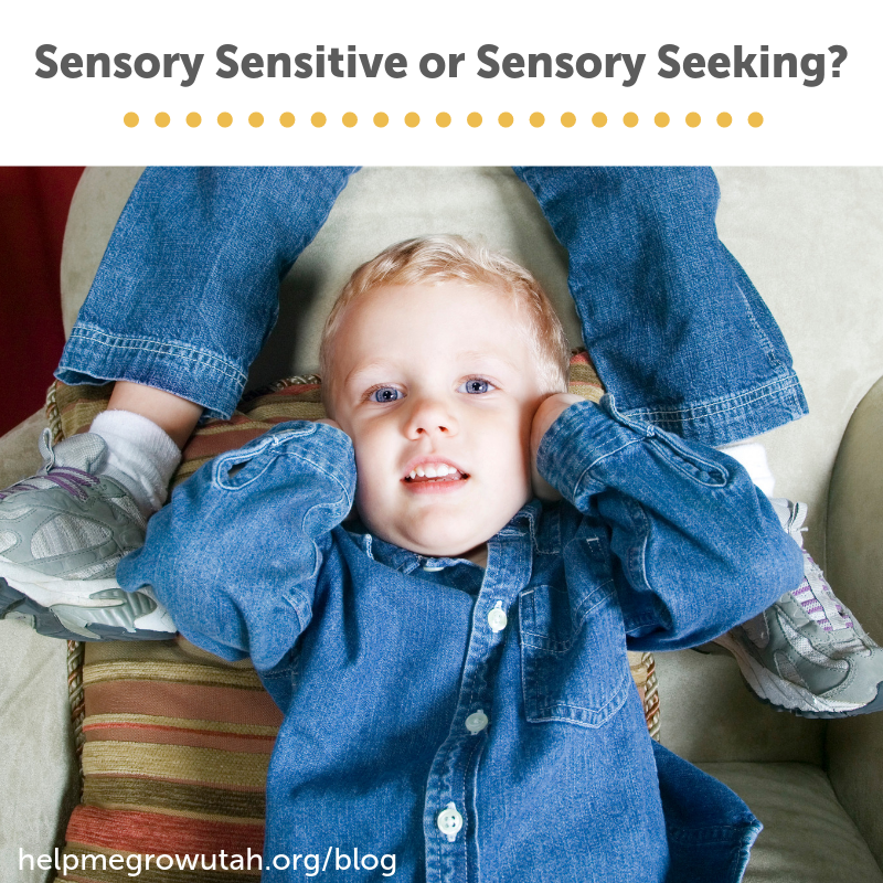 Sensory Sensitive or Sensory Seeking? Understanding Sensory Processing