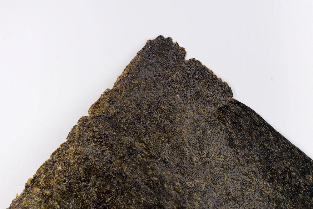 A close-up of a rock  Description automatically generated with medium confidence