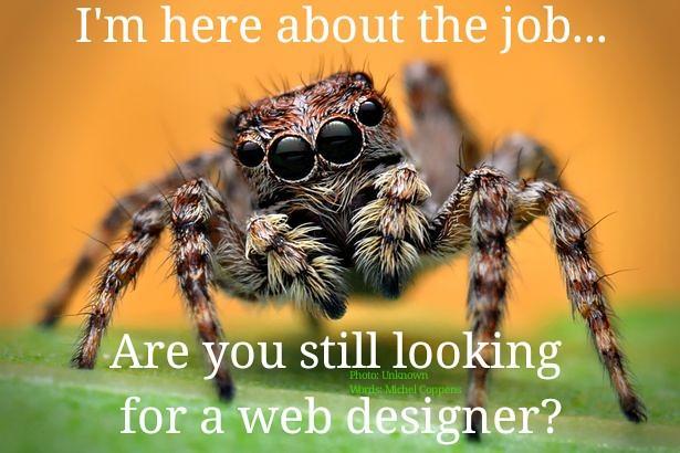 spider #spiders #joke #funny #meme #mademelaugh #couldntr…   Flickr
