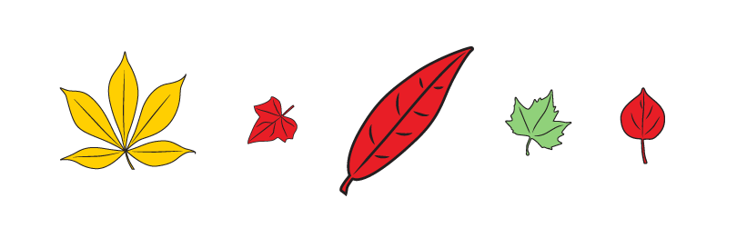 Five leaves in a row. Leaf 1: large, yellow. Leaf 2: small, red. Leaf 3: large, red. Leaf 4: small, green. Leaf 5: small, red.