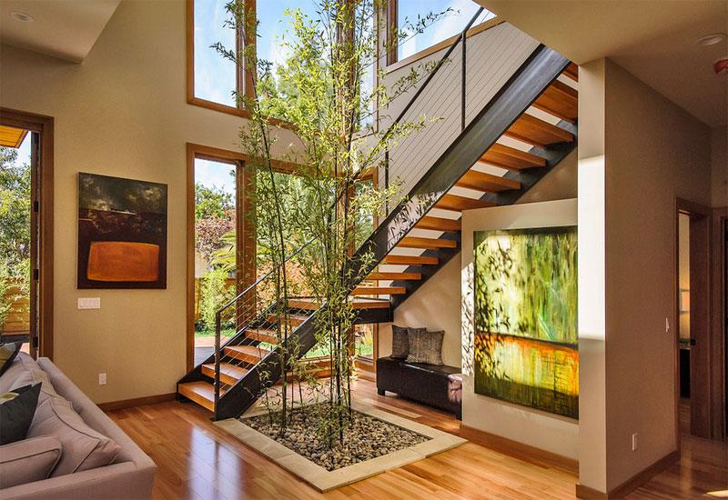 indoor bamboo tree green plants decoration