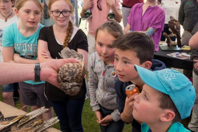 F:\GoT\Bruny Bird Festival\2016\pics\2016\Teaching kids about raptors.jpg