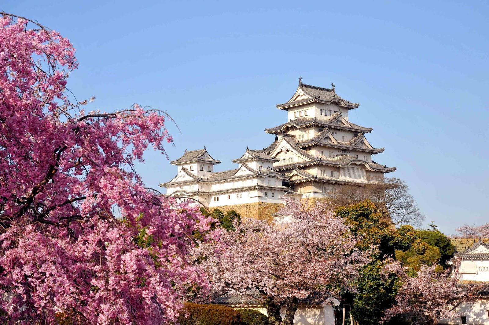 незабываемая Япония фото