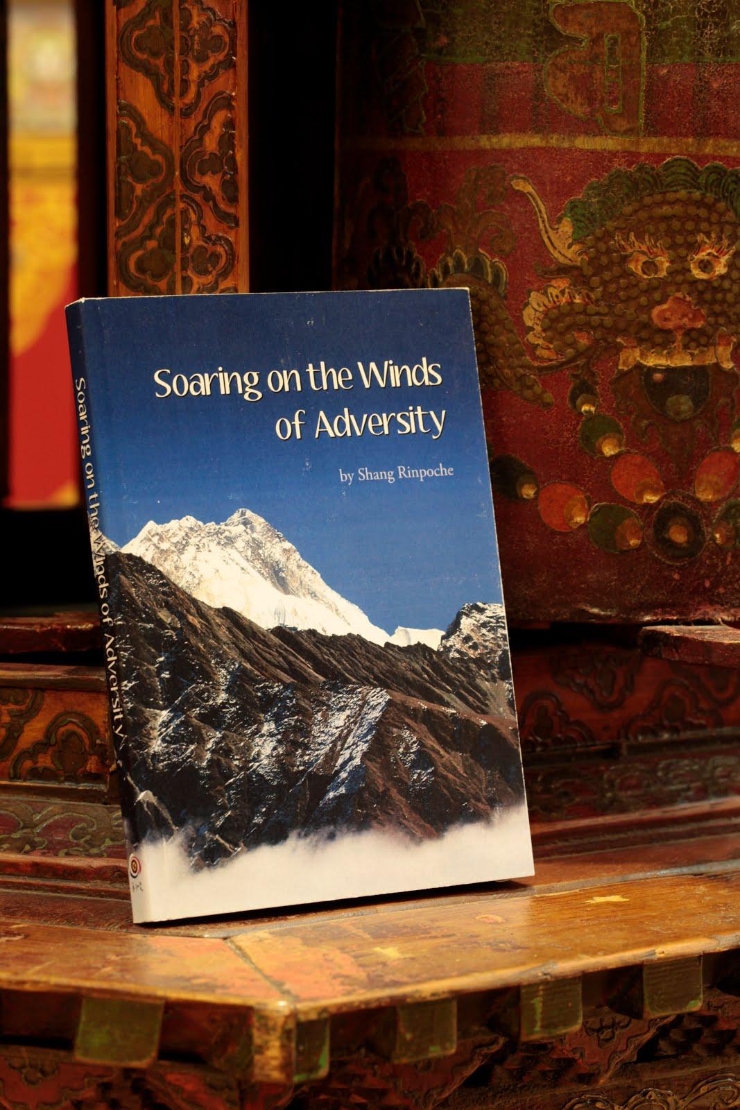 Soaring on the Winds of Adversity Original.jpg