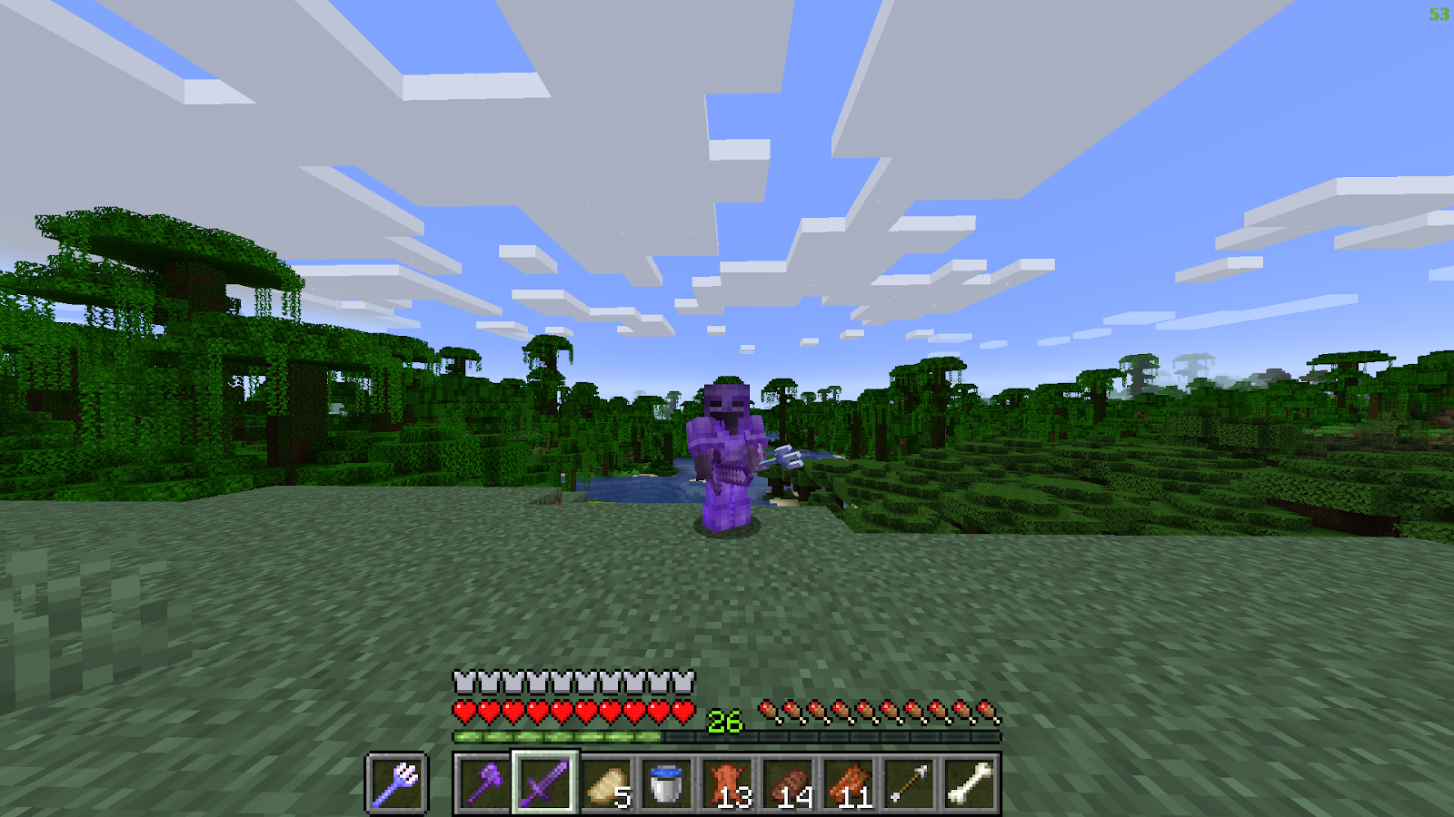 Armored Minecraft player standing before a forest biome