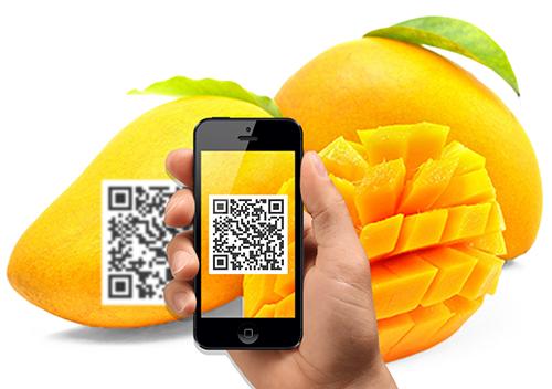 Công nghệ blockchain góp phần thay đổi nông nghiệp Việt Nam ...
