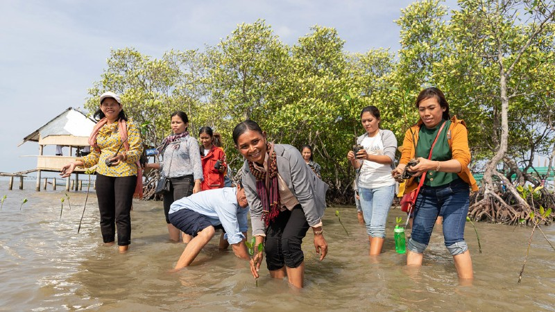 Female-led, island-based solutions to climate change