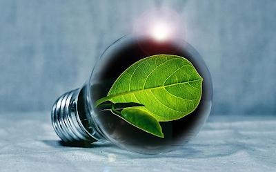 Trees save energy light bulb