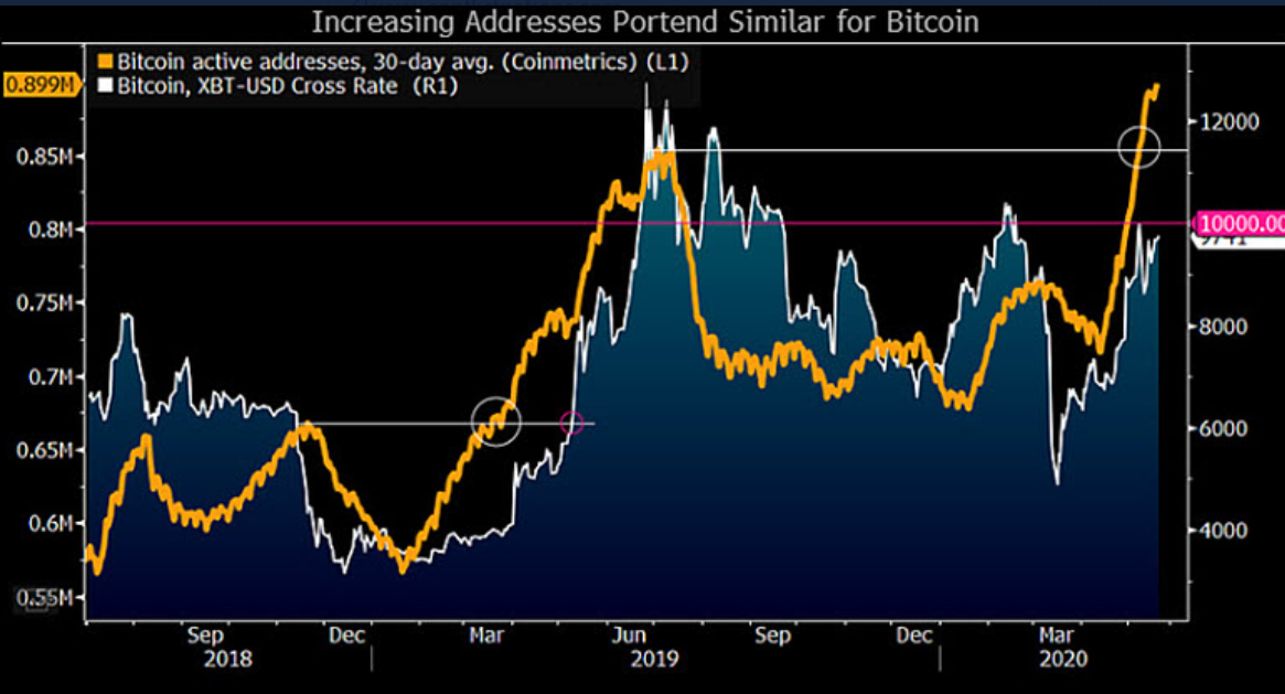 amber group macro bitcoin