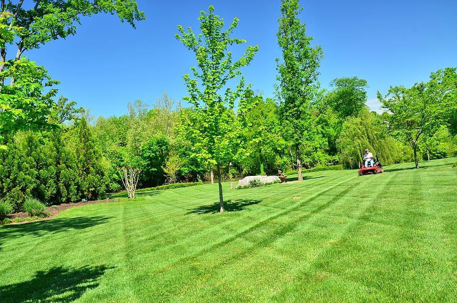 https://p1.pxfuel.com/preview/307/264/1000/lawn-care-lawn-maintenance-lawn-services-grass-cutting-lawn-mowing.jpg