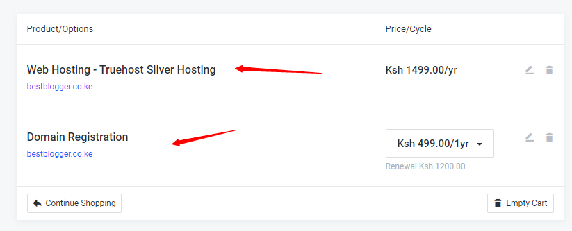 reviewing your cart when starting a website in kenya