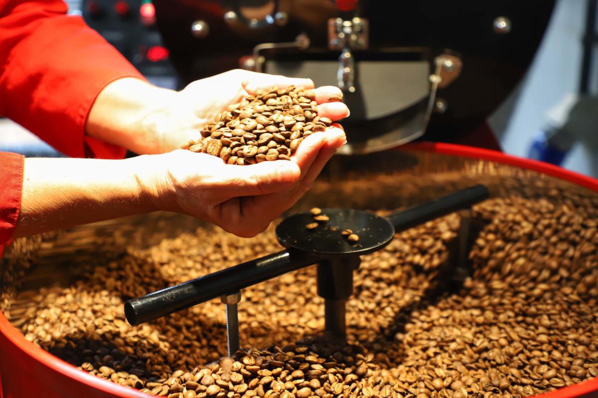 Rota turística explora a cultura cafeeira no Norte do Paraná. (Fonte: AEN/José Fernando Ogura)