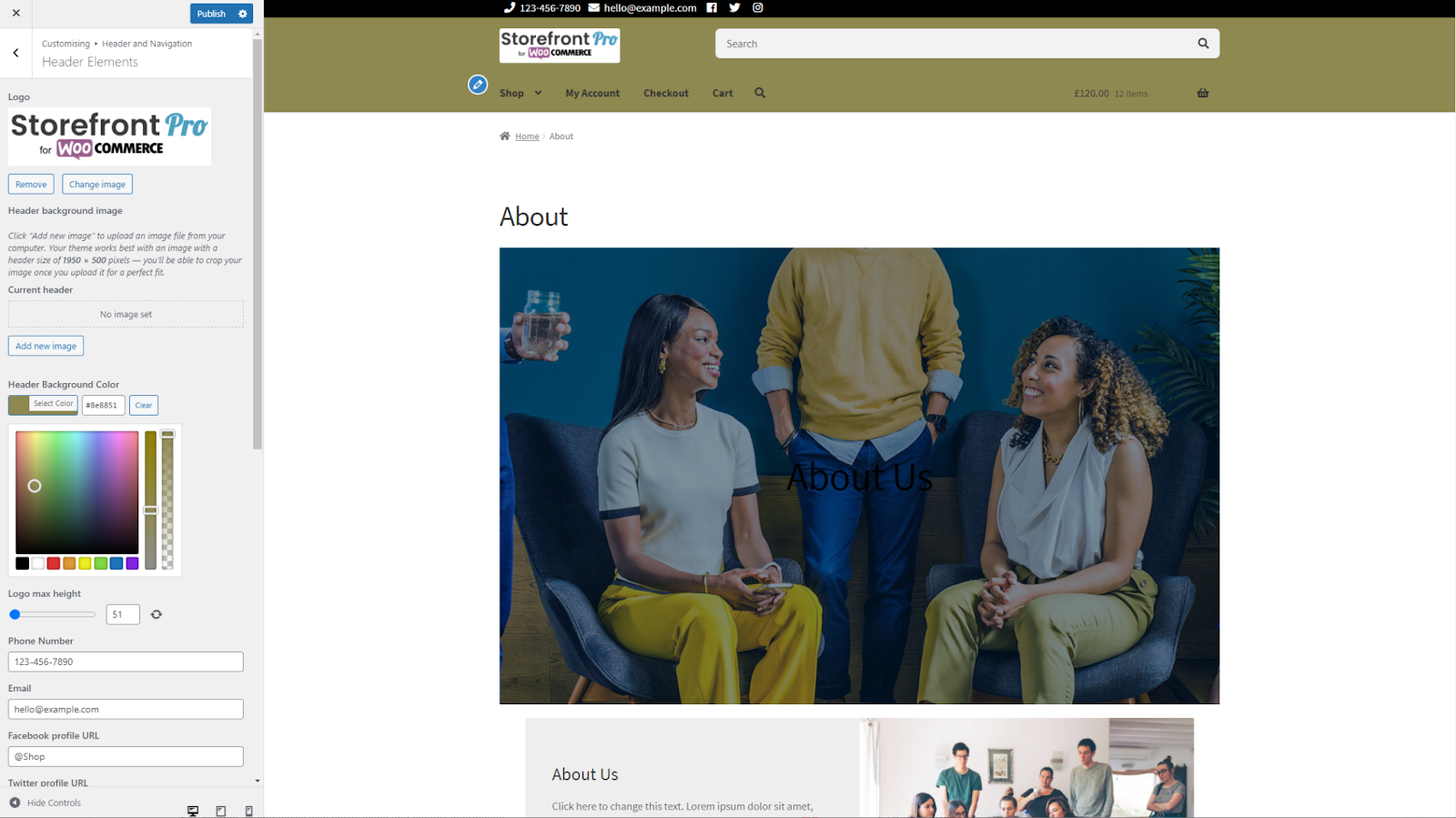 Changing Storefront Pro header elements