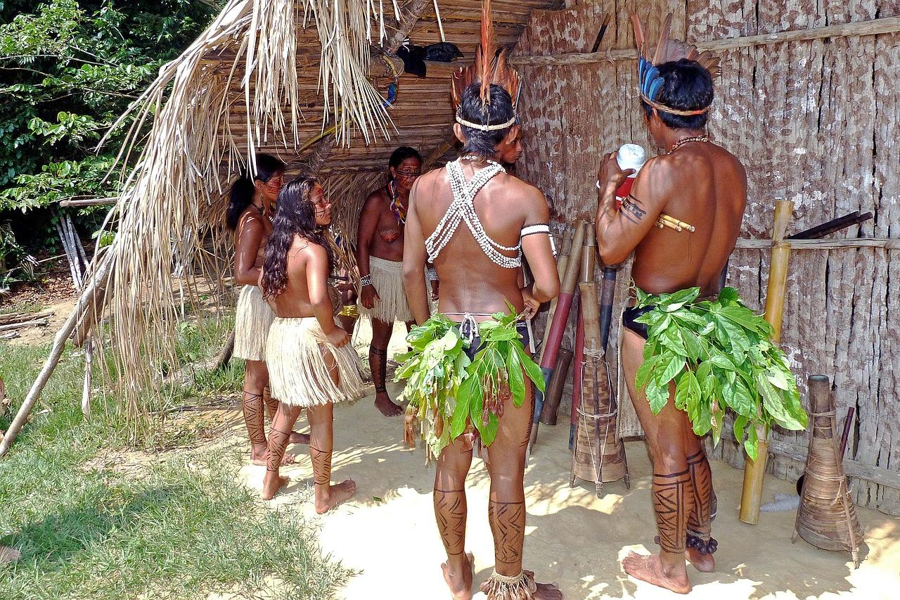 O desmatamento ilegal causa conflitos e mortes de índios, pequenos agricultores e defensores ambientais