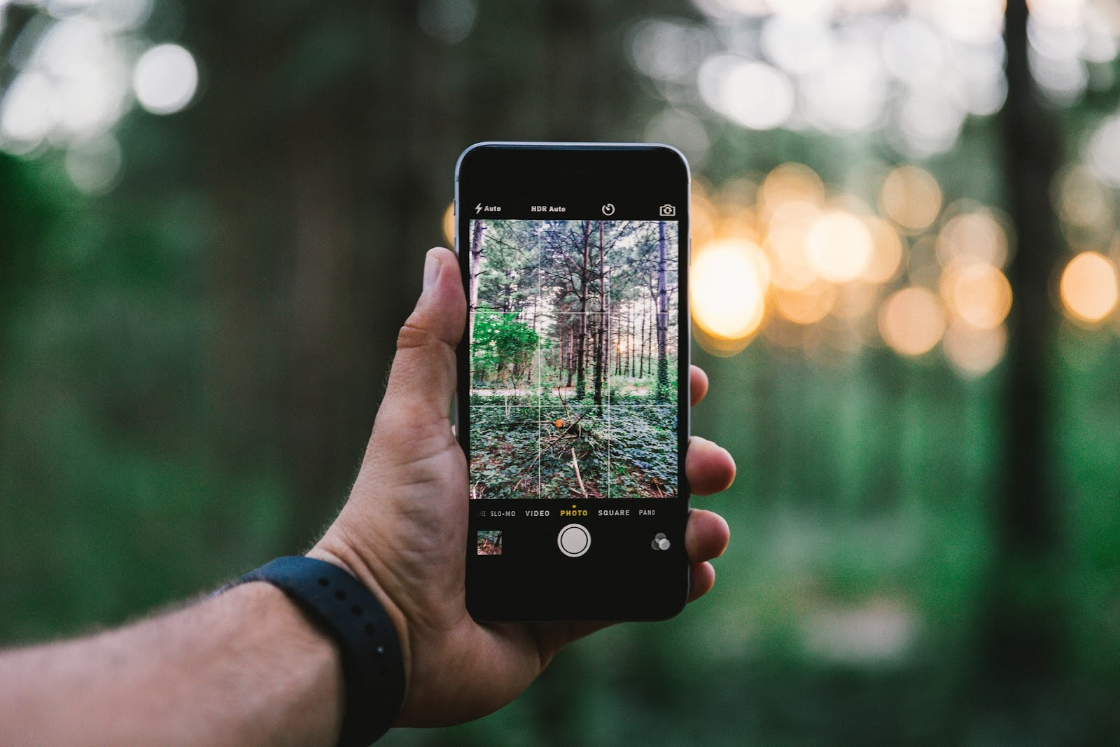A hand holds an iPhone that is preparing to take a picture of a sunset in the woods.
