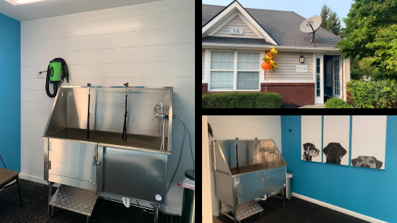 Collage of pet spa pictures at Autumn Creek apartments